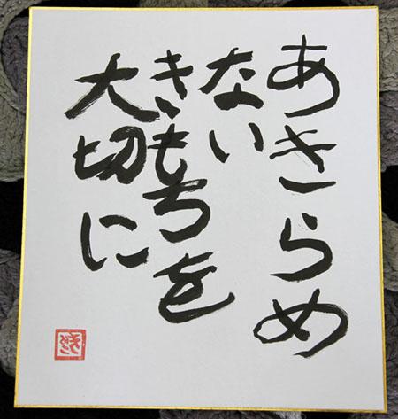 f:id:hakute03:20170302150316j:plain