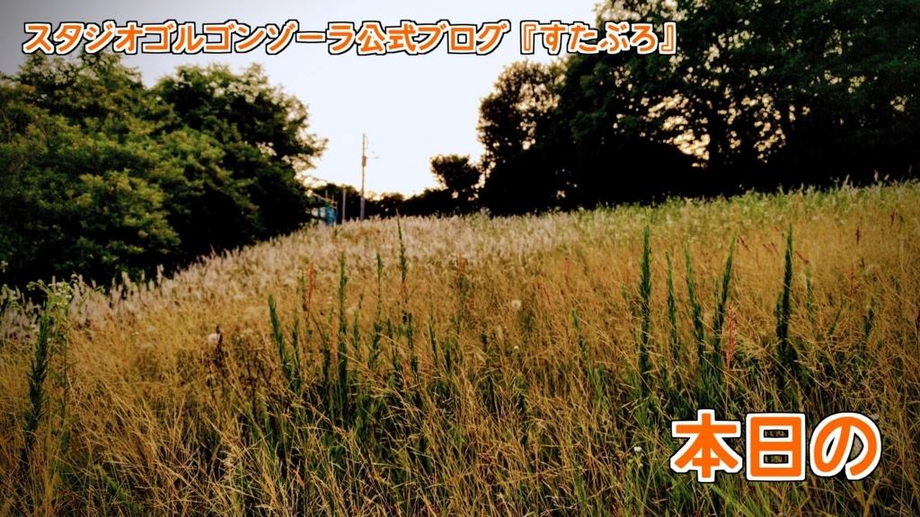 f:id:hakuto4645:20170611231400j:plain