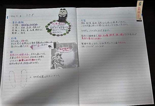 f:id:hal-minehiro:20160905211457j:plain