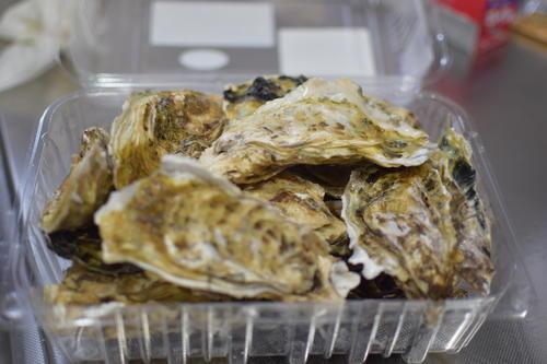 唐津うまかもん市場の牡蠣
