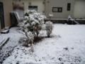 [冬][雪][風景]初雪2009_2