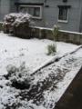 [冬][雪][風景]初雪2009_1