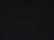しし座流星群の日のしし座