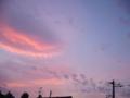 [空][夕焼け]ピンク色の夕焼け空1