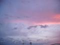 [空][夕焼け]ピンク色の夕焼け空2