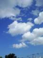 [空]青い空白い雲1