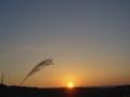 [空][夕焼け]夕日