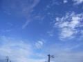 [空]台風一過の朝の青空