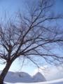 [雪][空][冬]雪の日の晴れた空