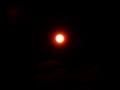 [天文][日食]日食撮影予行演習