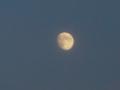 [月][天文]十三夜・栗名月