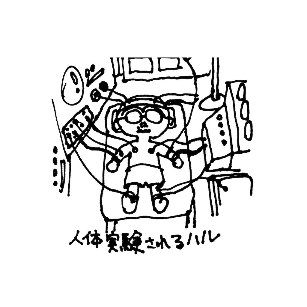 f:id:halnoyamanashi:20190214084112j:image