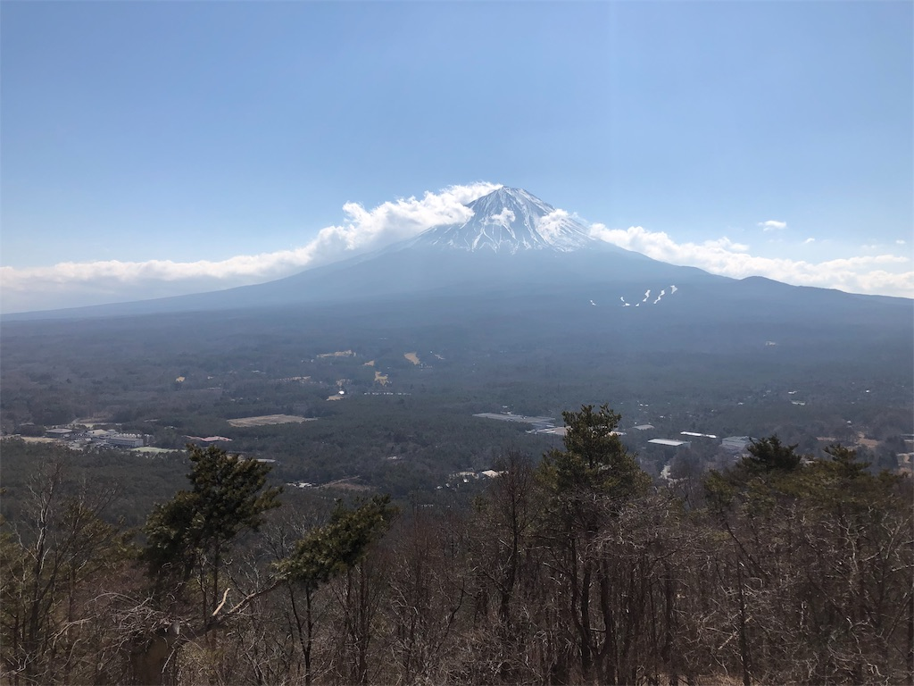 f:id:halnoyamanashi:20190218045224j:image