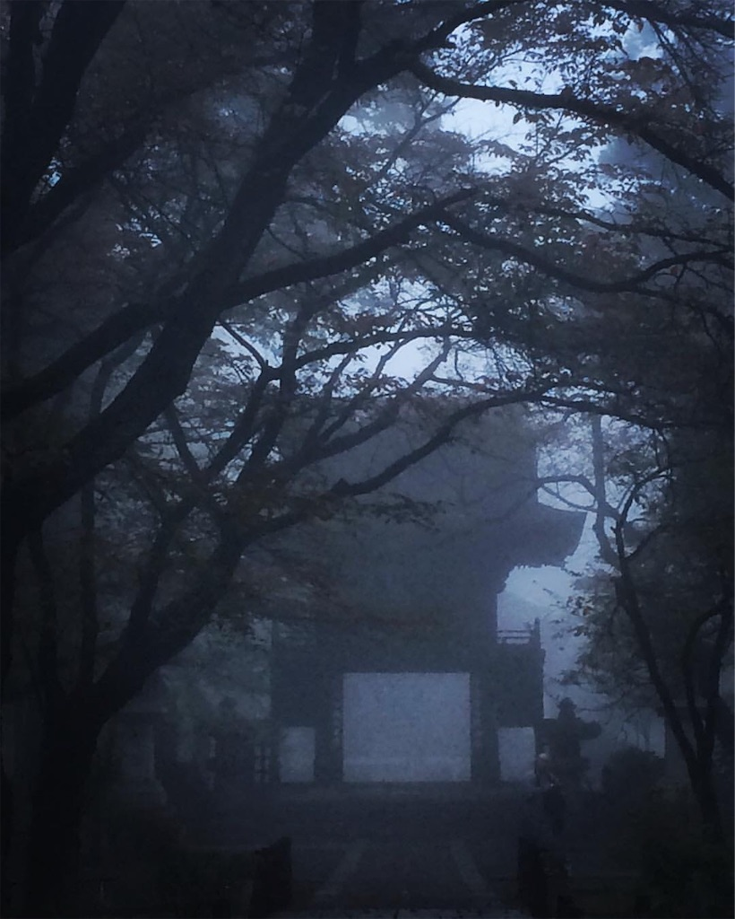 f:id:halnoyamanashi:20190218121938j:image