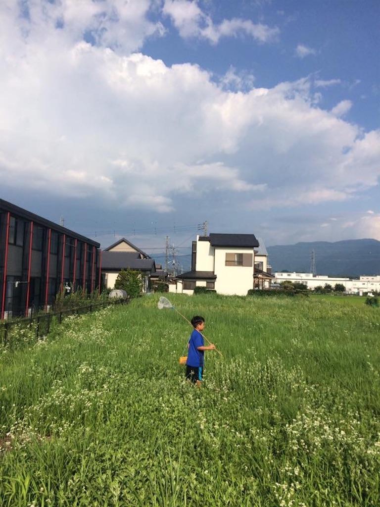 f:id:halnoyamanashi:20190222202941j:image