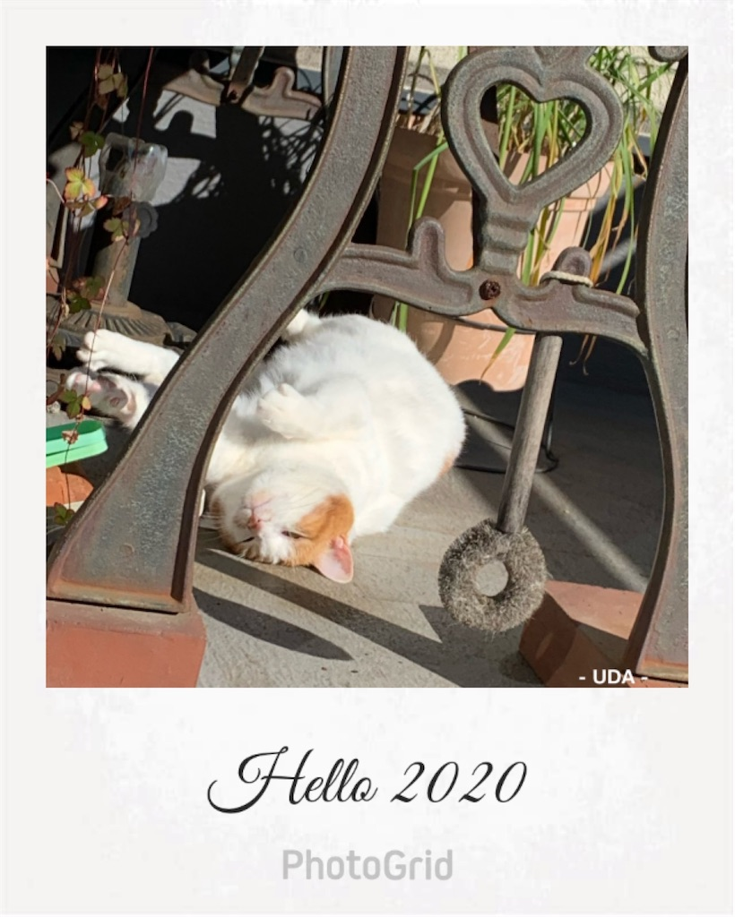 f:id:halse0323:20200101161303j:image