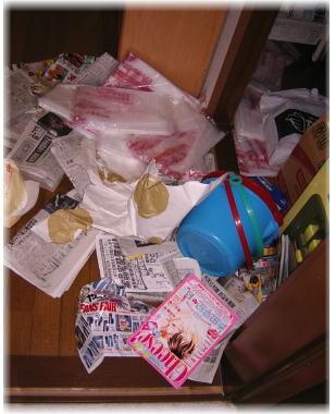 無残にハルの足でかき乱された新聞やゴミ袋やバケツの散乱した様子の階段下収納の写真
