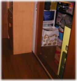 一応片付けられている階段下収納の写真
