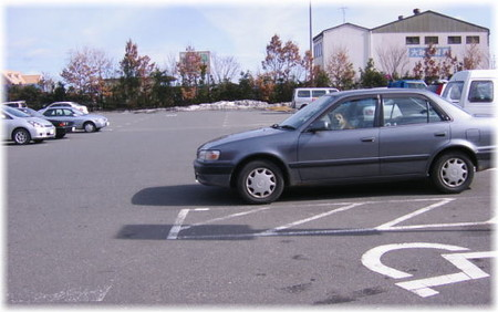 スーパーの駐車場で車の中からお店の入り口をじっと見つめているハルの写真