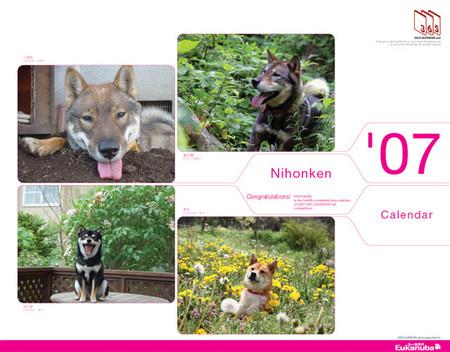 365カレンダーの日本犬の表紙の写真