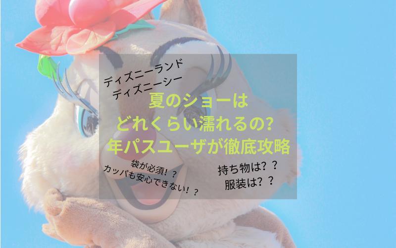 【ディズニー】夏のショーはどれくらい濡れるの?年パスユーザが徹底攻略!!