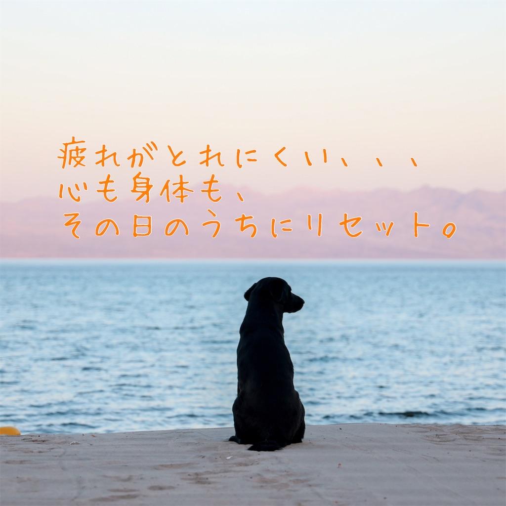 f:id:hama_nn:20190529225628j:image