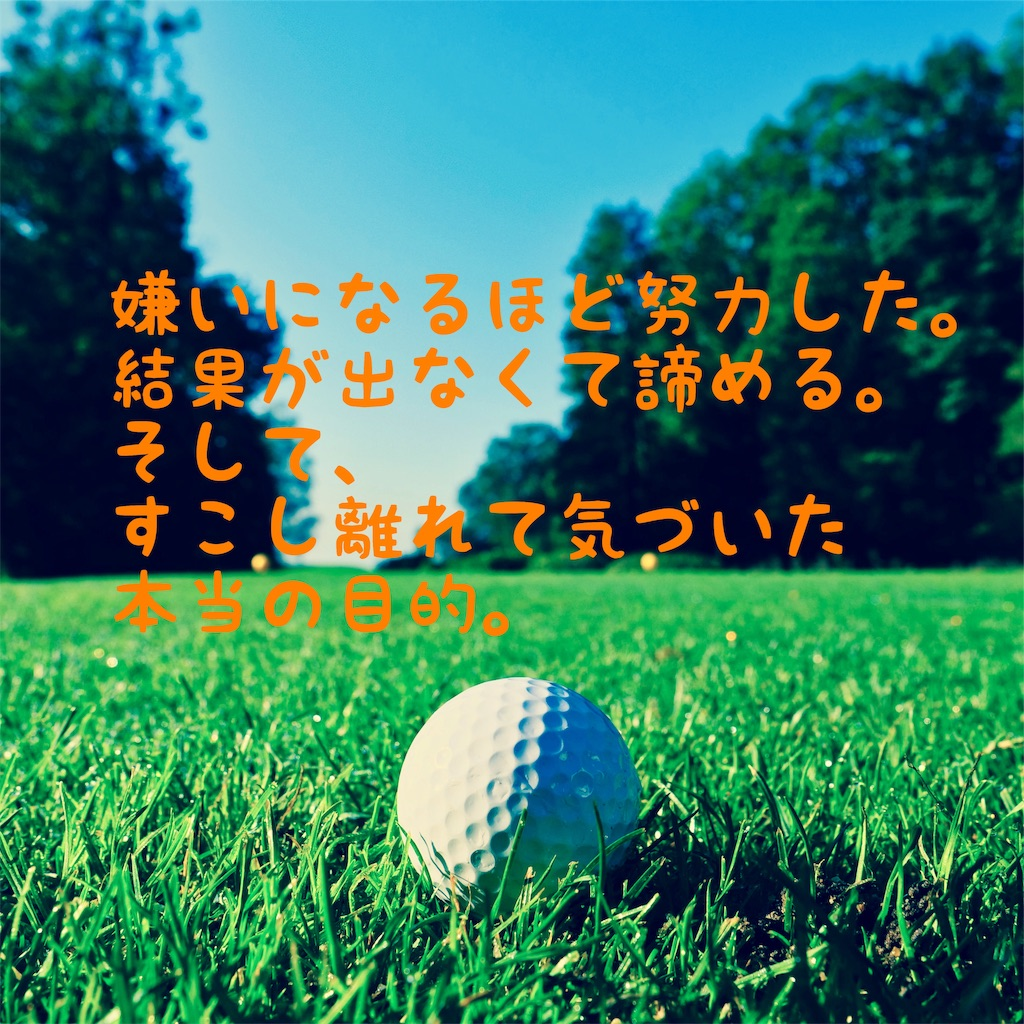 f:id:hama_nn:20190602201118j:image