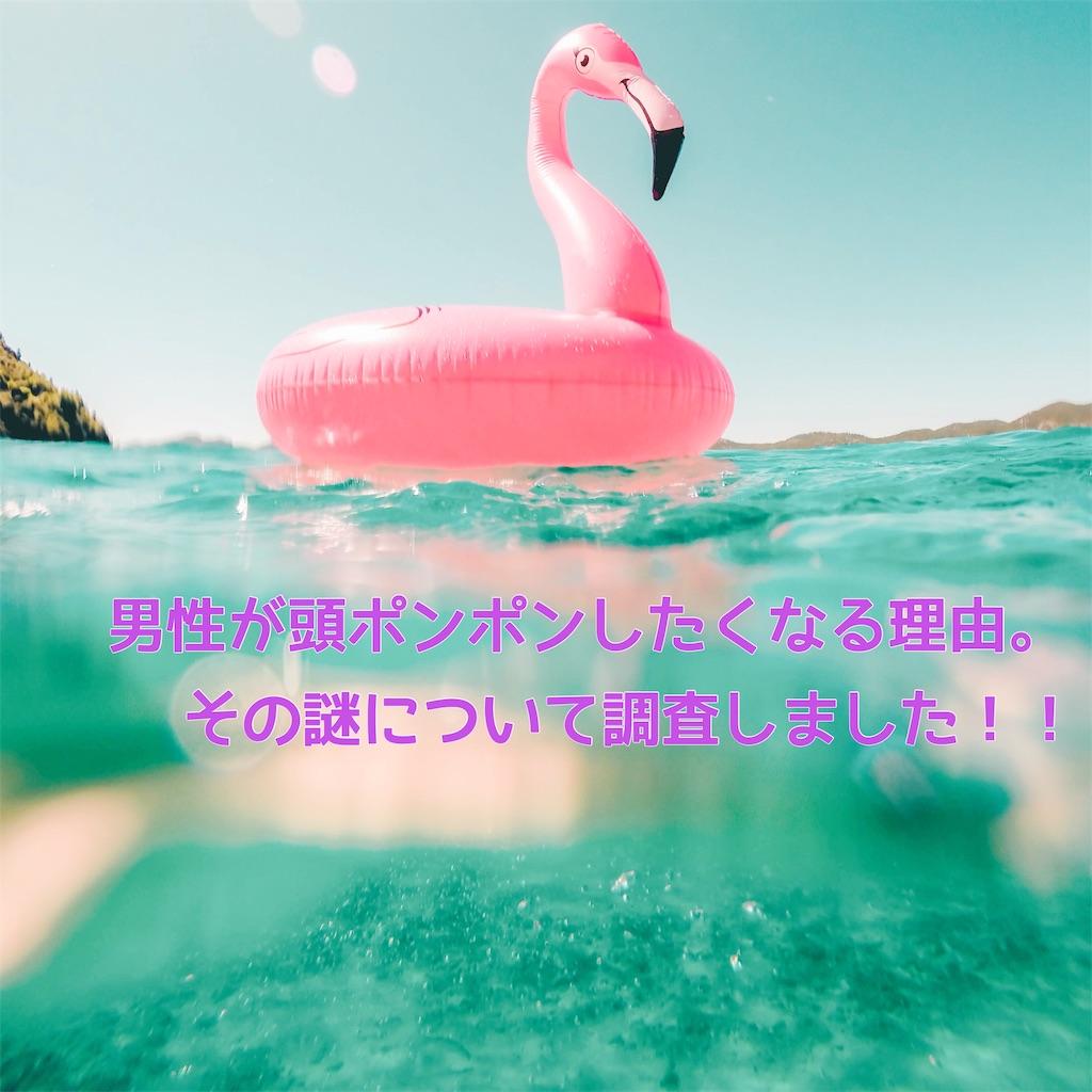 f:id:hama_nn:20190706162041j:image