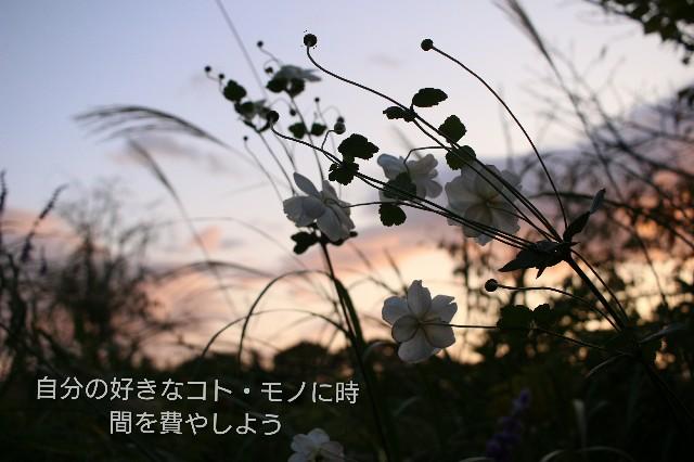 f:id:hamachi1218:20190419101724j:plain