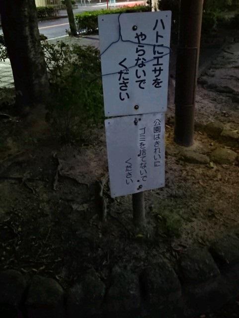 f:id:hamachidayo:20181006215738j:plain