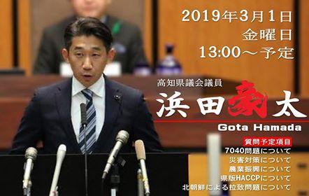 f:id:hamada-gota:20190227222509j:plain