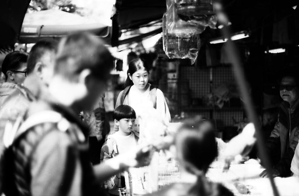 香港 バードガーデン2