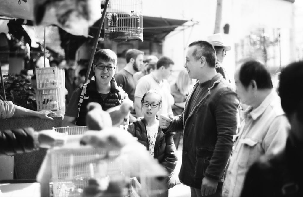 香港 バードガーデン1