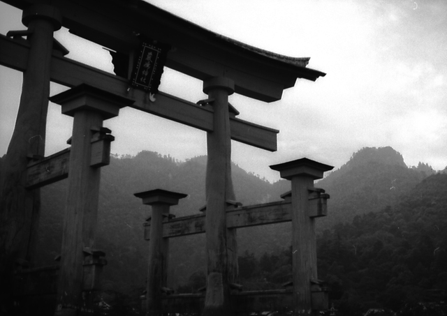 宮島の大鳥居2