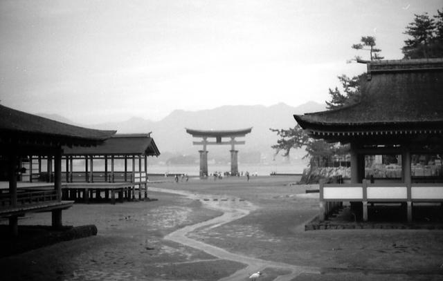 厳島神社から大鳥居を見る