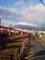 どこから見ても富士山
