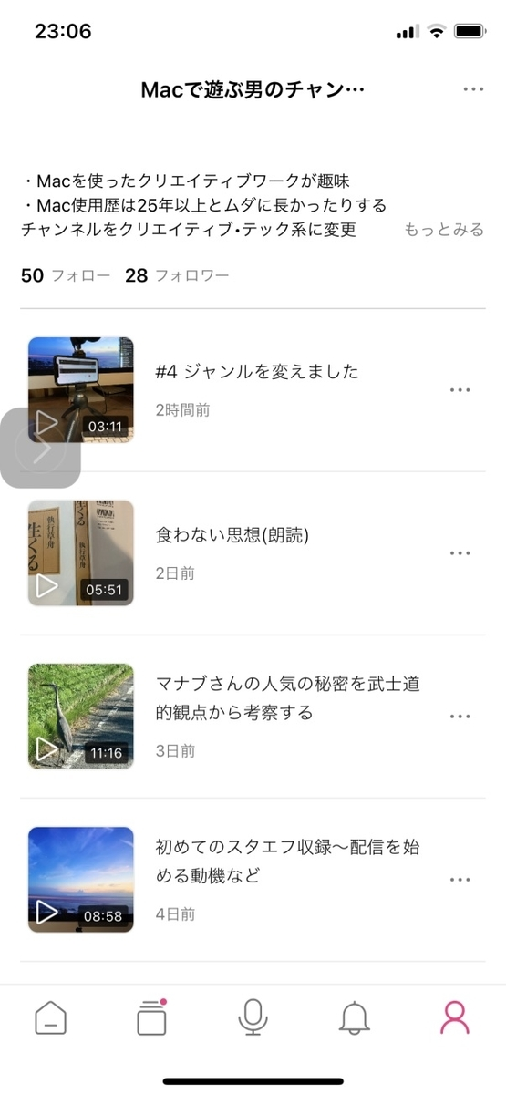 f:id:hamajaya_ken:20201115231436j:plain