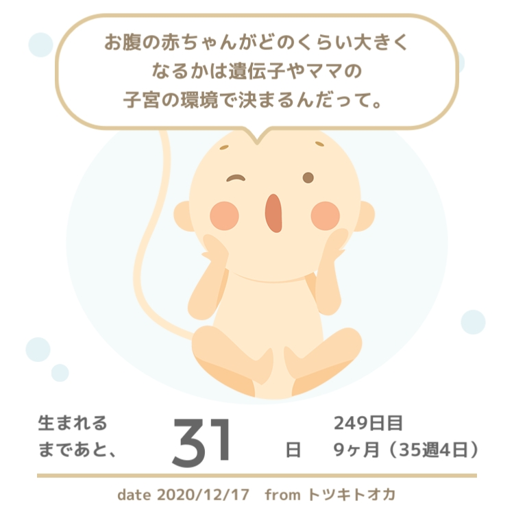 f:id:hamaji55:20201221173250j:plain