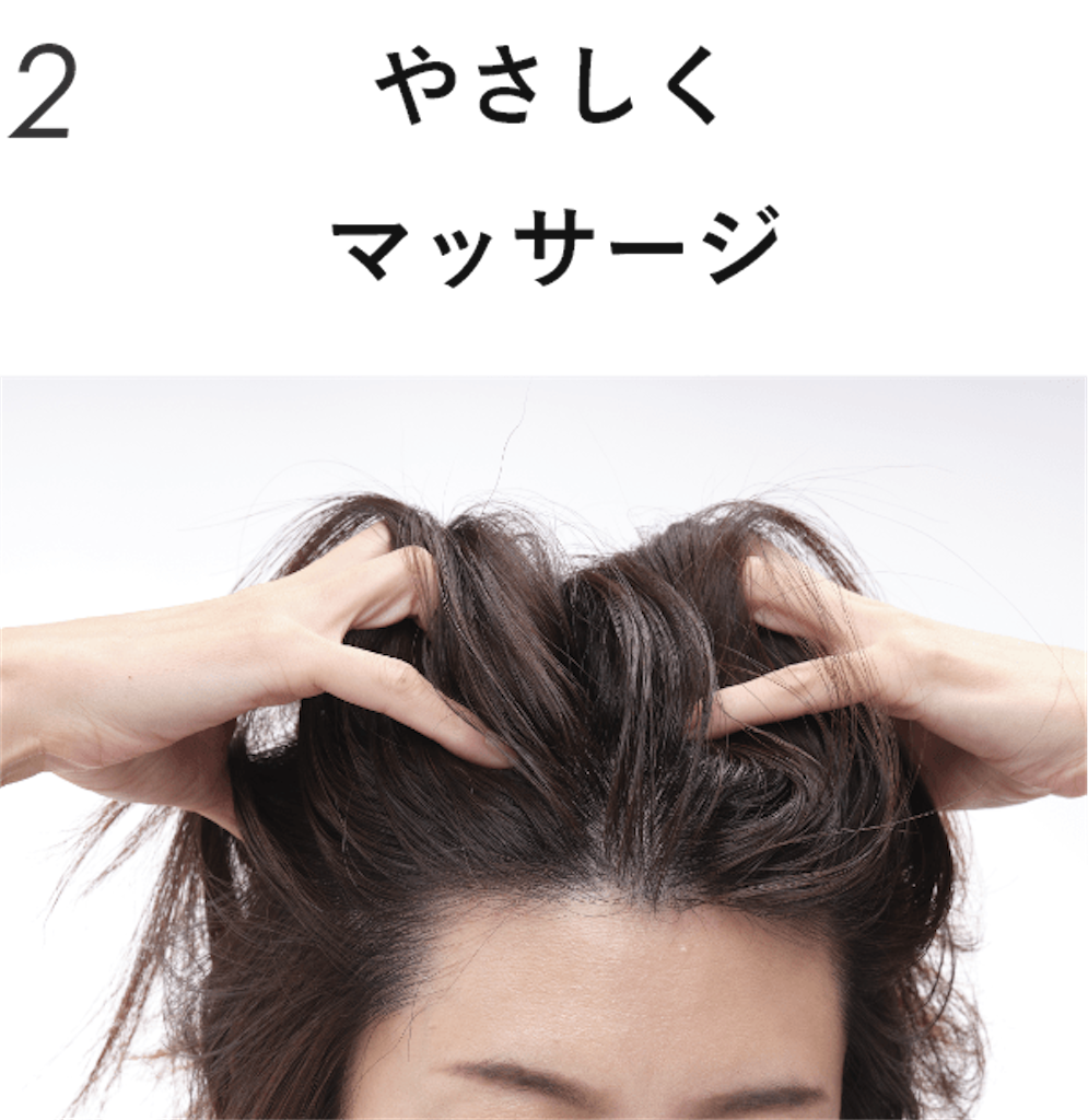 f:id:hamamaru1:20210410221900p:plain