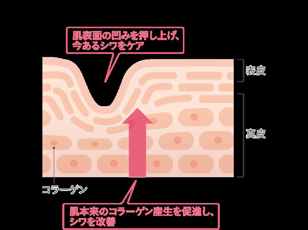 f:id:hamamaru1:20210425180342p:plain