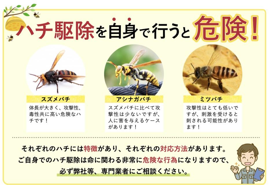 f:id:hamamatsu-hachikuzyo:20190614101743j:plain