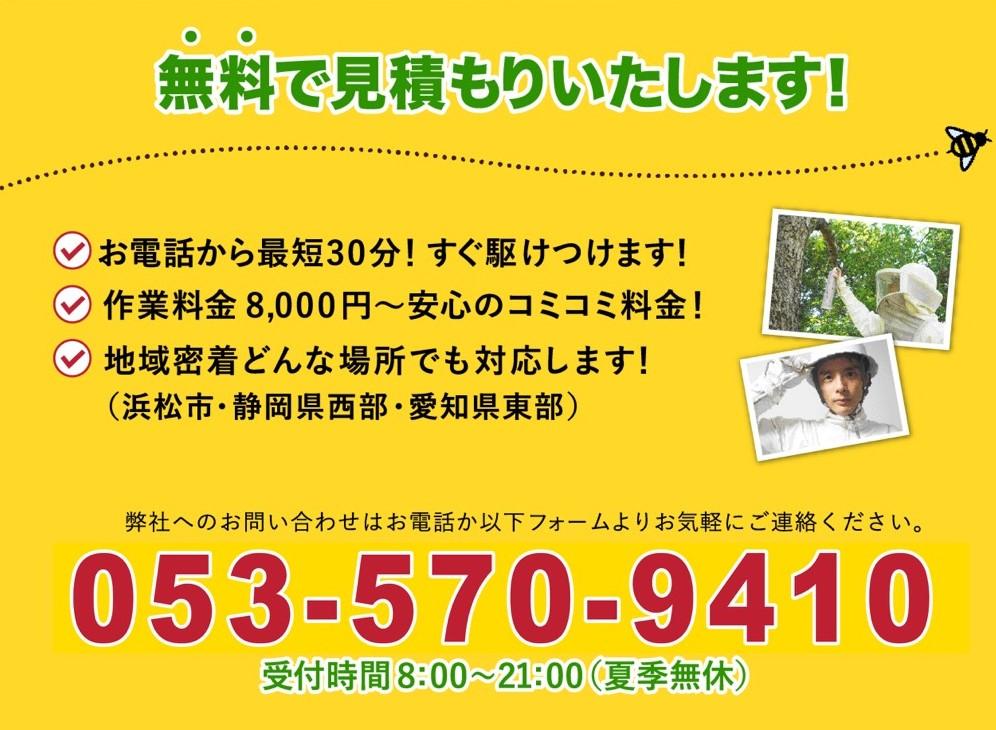f:id:hamamatsu-hachikuzyo:20190614223017j:plain