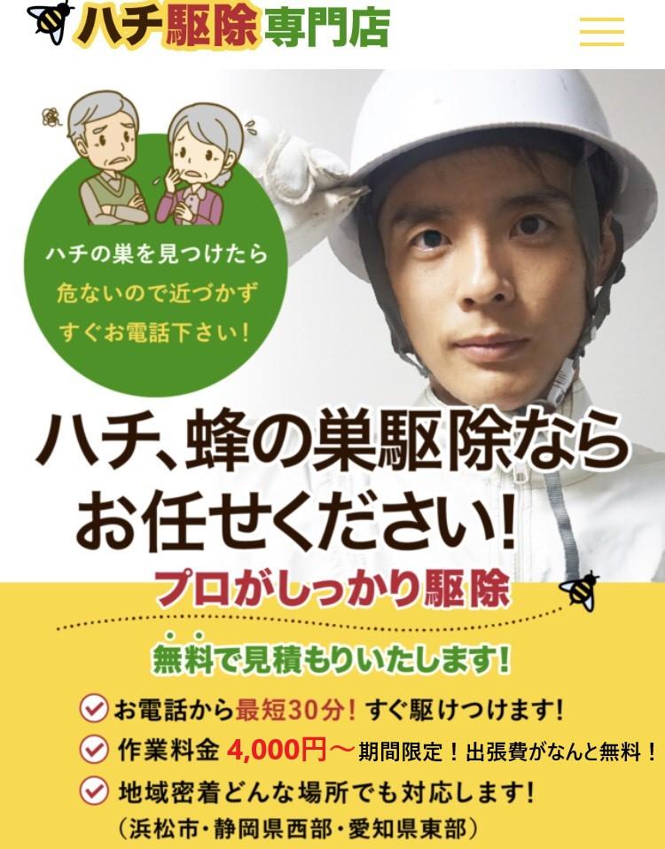 f:id:hamamatsu-hachikuzyo:20190702193813j:plain