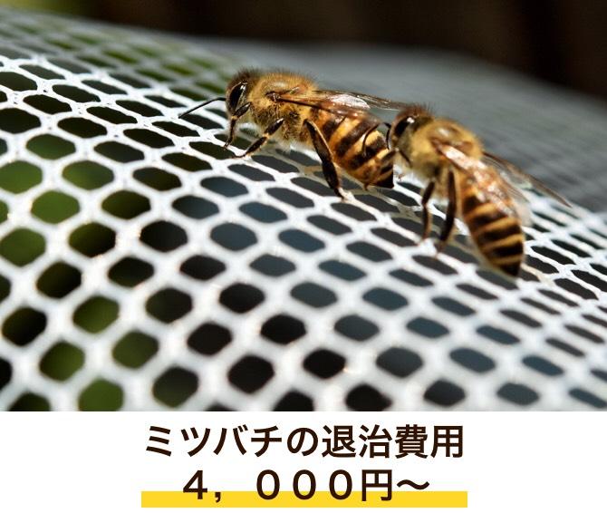 f:id:hamamatsu-hachikuzyo:20190702203351j:plain