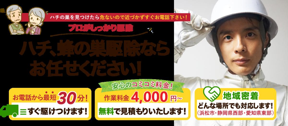f:id:hamamatsu-hachikuzyo:20190702205644p:plain