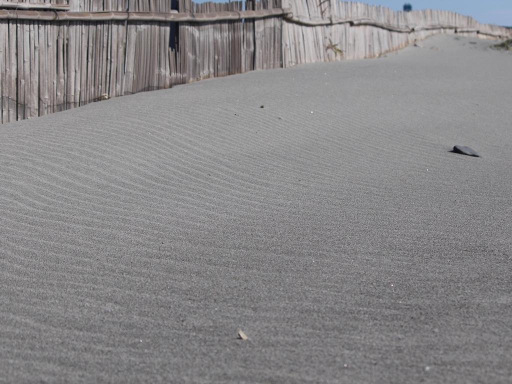 中田島砂丘の風紋
