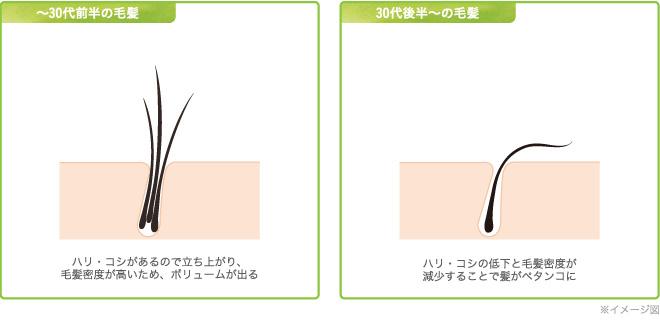 f:id:hamamichister:20210418175229j:plain