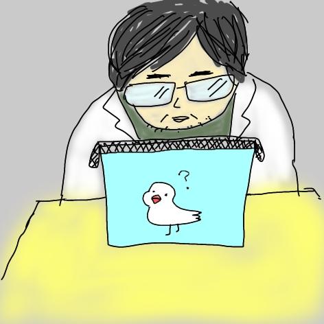文鳥 病院での診察