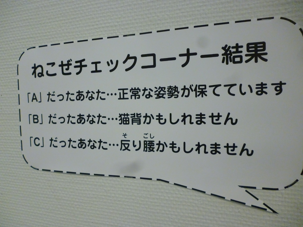 f:id:hamasansu:20190311132355j:plain