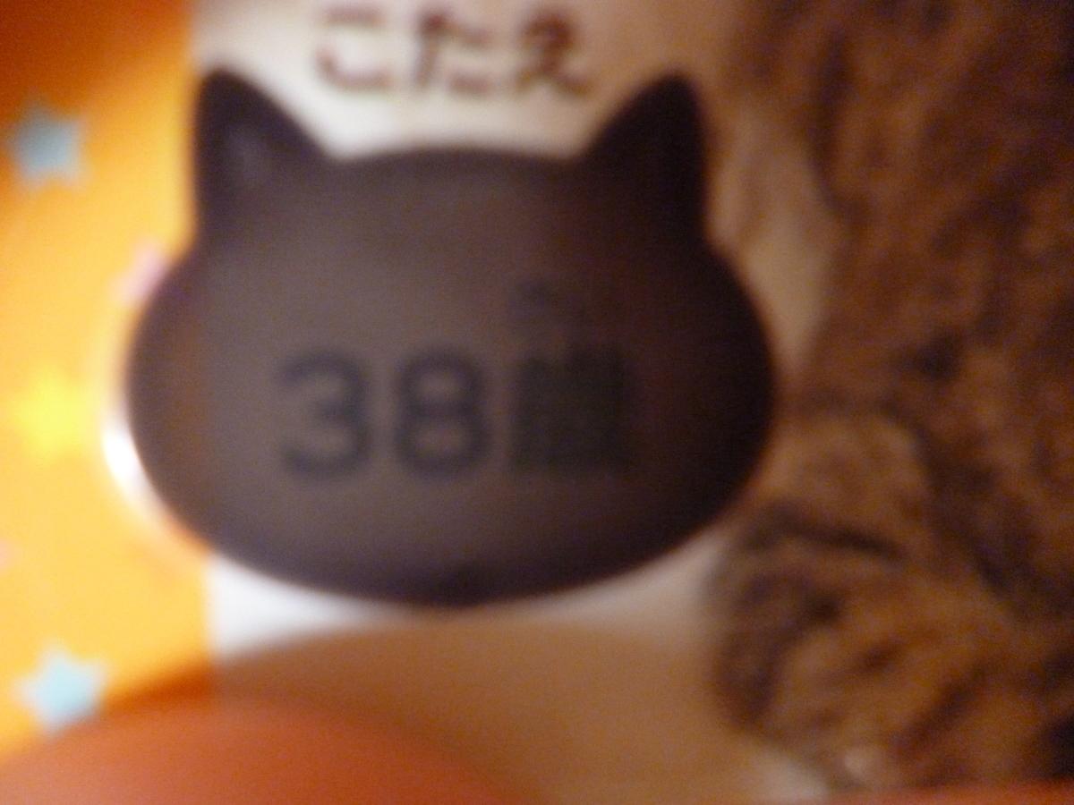 f:id:hamasansu:20190529065208j:plain